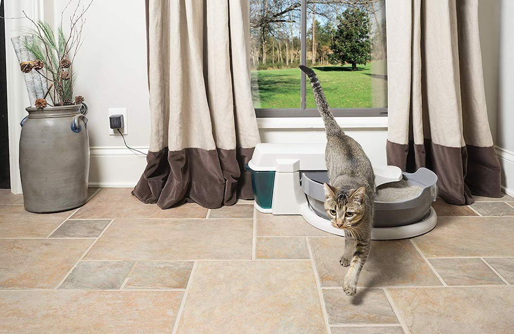 The 8 Best Self Cleaning Litter Boxes 2020 Reviews Petlisted