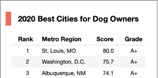 best cities for dog owners 2020