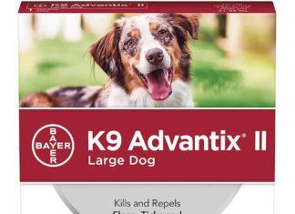 k9 advantix flea tick medicine