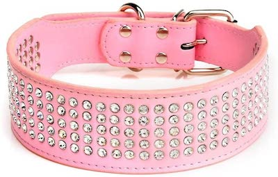 pink rhinestone dog collar
