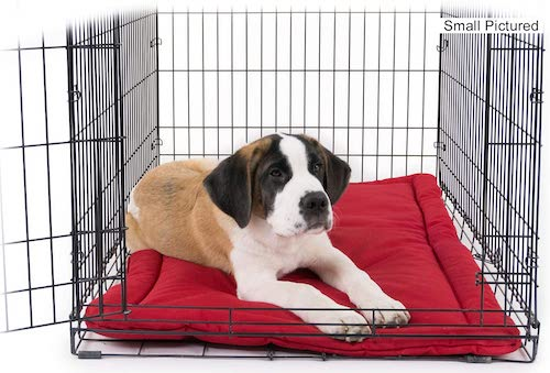 chew proof crate pad