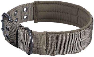 green wide dog collar