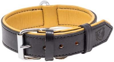 riparo leather dog collar
