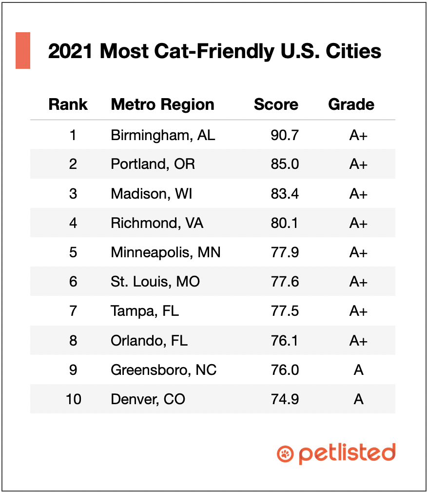 most cat friendly cities in 2021 table