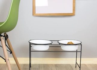 elevated double dog feeder