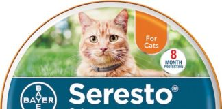 bayer seresto cat flea collar
