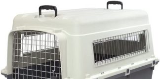 sportpet rolling dog travel crate