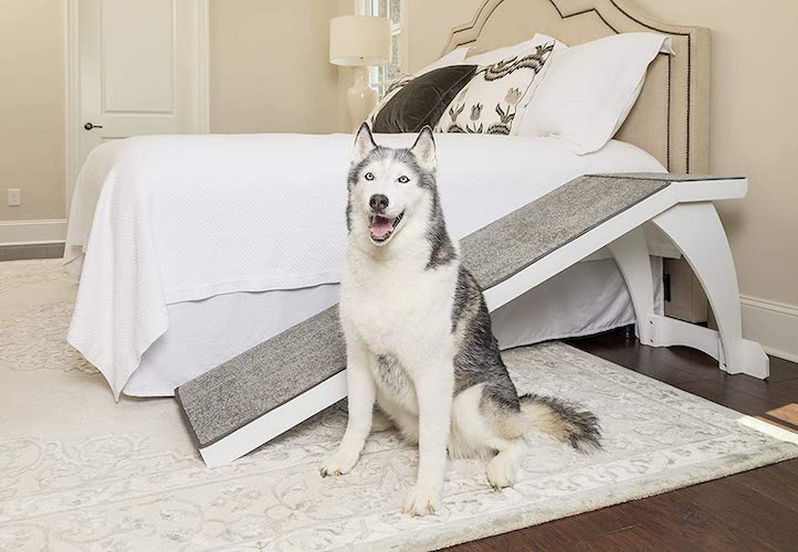 petsafe cozyup bed ramp for dogs