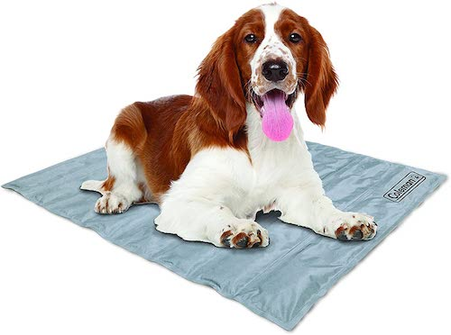 coleman cooling gel dog mat