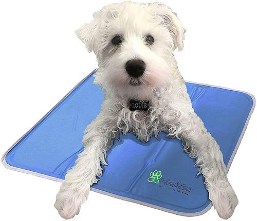green pet shop dog cooling mat