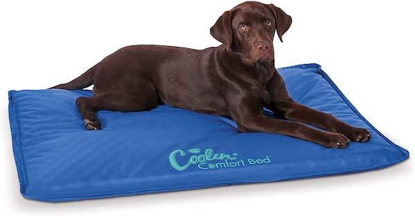 kh coolin comfort dog bed