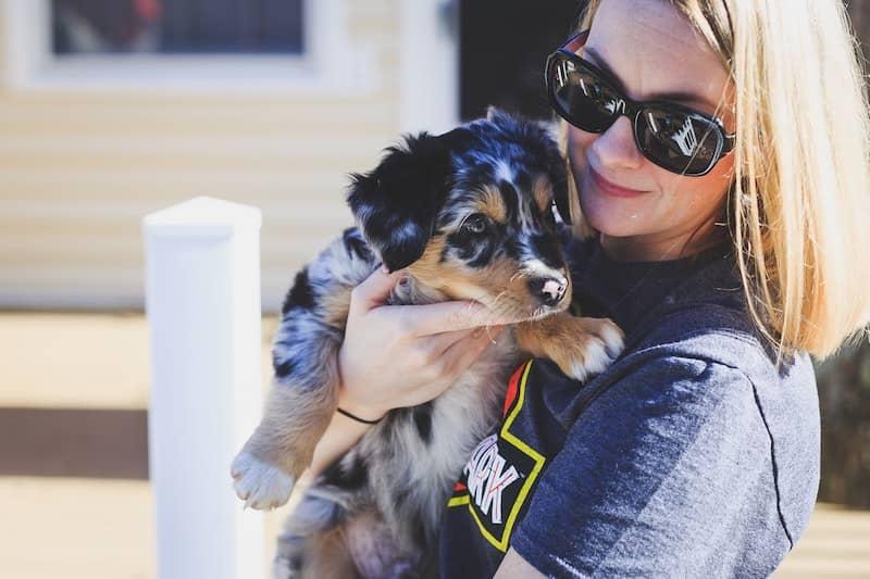 woman holding australian shepherd puppy