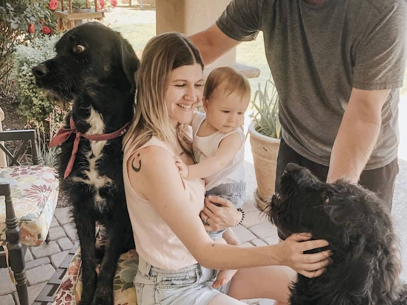 family with labradoodles